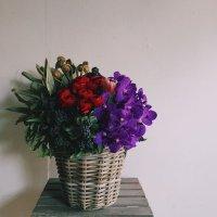 Fresh arrangement(フレッシュ アレンジメント)  LL